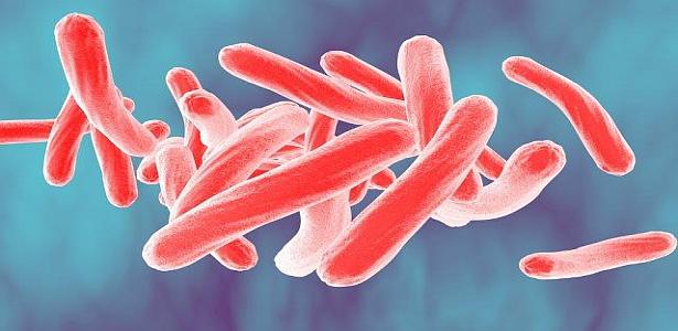 Antibiyotiğe Dirençli Bakterileri Yok Etmenin Yolu Yine Bakteriler Olabilir.