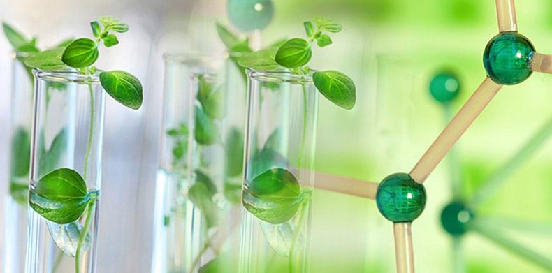 Antik Enzimler Daha Yeşil Kimyaya Katkıda Bulunabilir