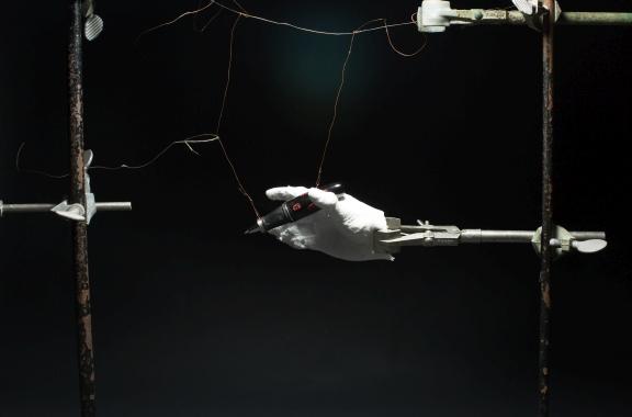 Araştırmacılar Kauçuk Benzeri Elastikiyet İle Şekil Hafızalı Aerojeller Geliştiriyor.