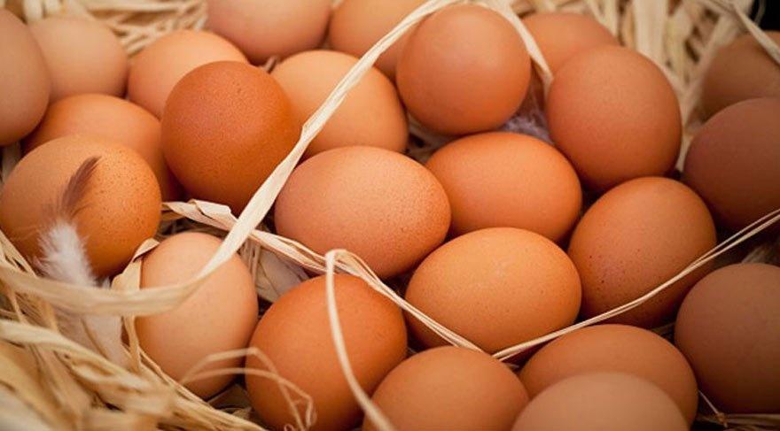 Avrupa'da Zehirli Yumurta Skandalı Büyüyor.