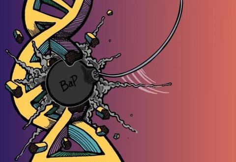 Aziz Sancar'dan Bir İlk Daha, Sigaranın DNA'ya Verdiği Zararın Haritasını Çıkardı.