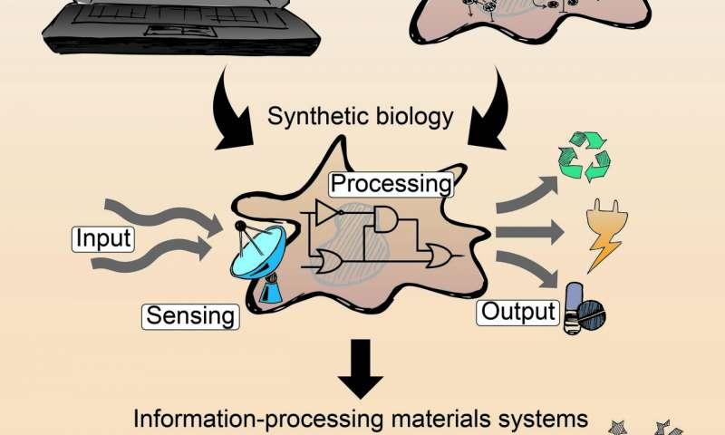 Bilgi İşleme İşlevselliği İle Yenilikçi Biyo-Hibrid Sistemler.