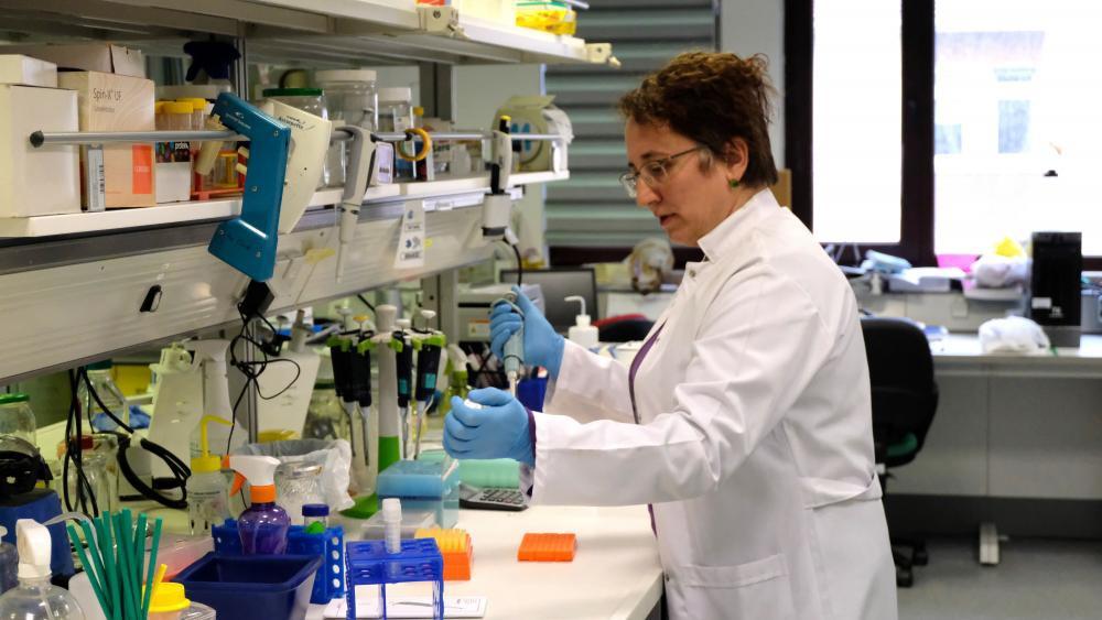Boğaziçili bilim insanları Koronavirüs aşısının peşinde