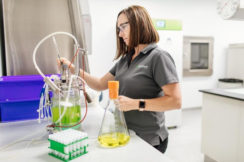 DSM ve Evonik sürdürülebilir su ürünleri yetiştiriciliği için yeni bir tesis açtı.