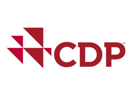 Kordsa, Karbon Saydamlık Projesi (CDP) İklim Değişikliği ve Su Programı Raporlamasında Liderlik Seviyesinde