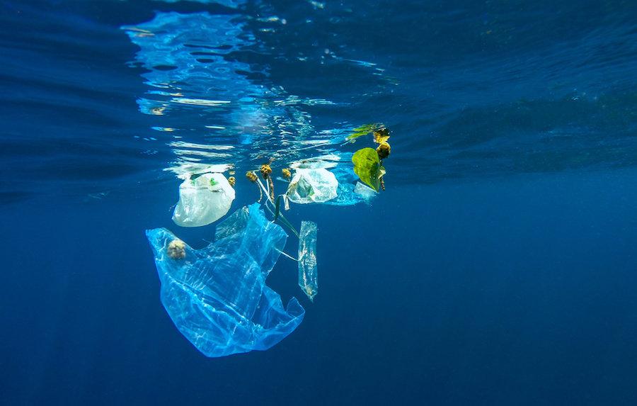 Plastik kirliliği, soluduğumuz oksijenin üretilmesine yardımcı olan bakterilere zarar veriyor