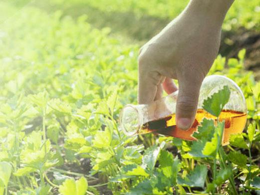 Tarımsal Sürfaktanlar Pazarının 2022 yılında 1.88 Milyar Dolara Ulaşması Bekleniyor.